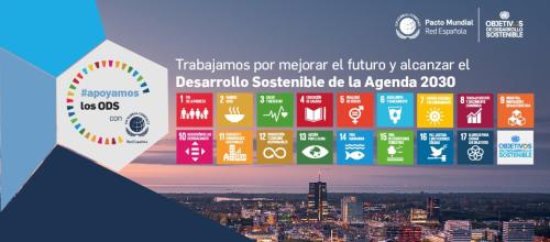 Desarrollo Sostenible de la Agenda 2030
